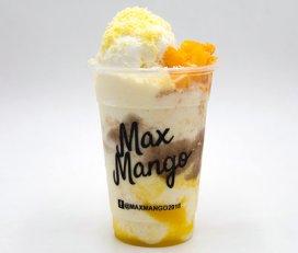 Max Mango – Main Branch