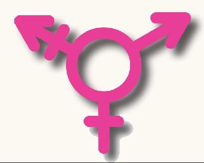 trans logo/icon