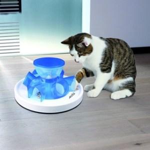 dezveti pisica sa muste
