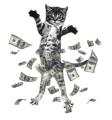 pisica bani