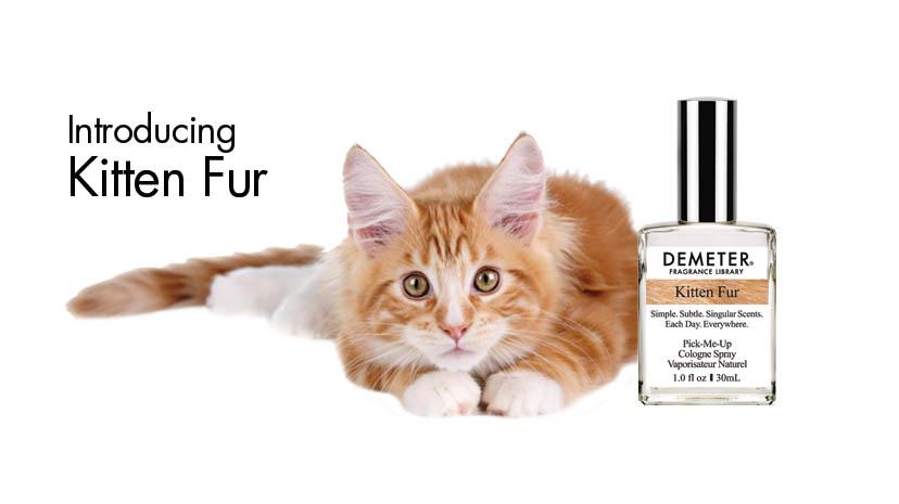 parfum cu miros de pisica