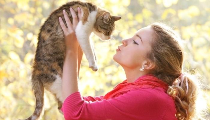ii arati pisicii tale ca o iubesti
