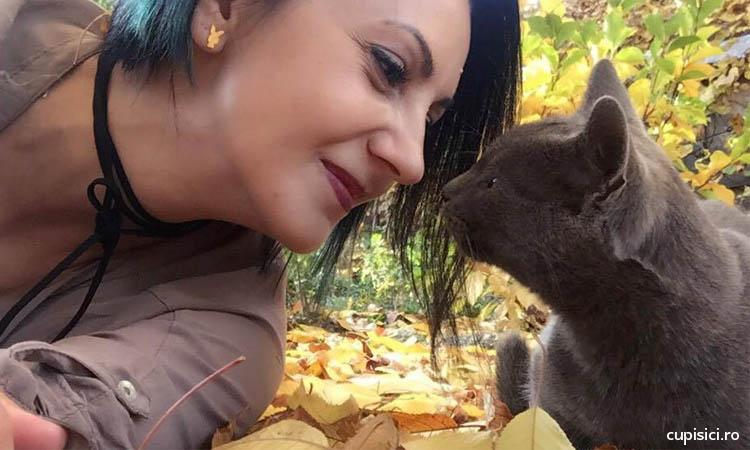 cum sa castigi increderea unei pisicute noi din cartier