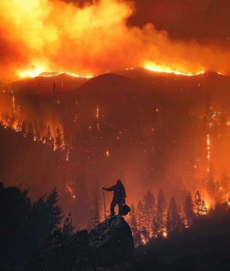 Incendi in Calabria: la situazione è più grave di quel che si pensa