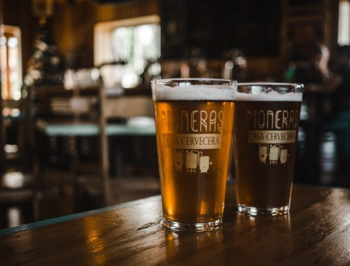 chile beer guide brands pionera cerveza craft local lager
