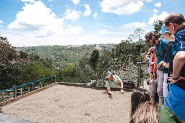 Filandia, Colombia or Salento? Las Acasias coffee farm tour in Colombia's coffee region pueblos; what to do in Filandia, colombia