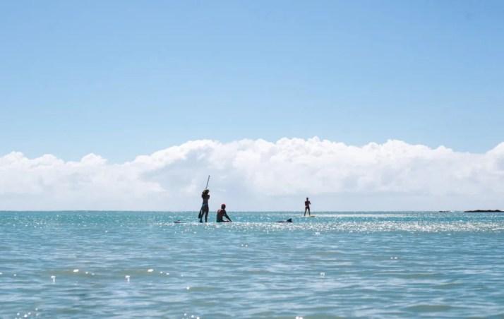 SUP Kayak with wild dolphins pipa brazil beaches
