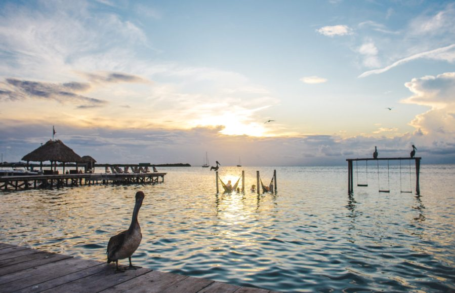Lazy Lizard Iguana Reef sunset Caye Caulker Tips for travel in Belize: advice before you go to Central America