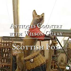 scottish fox
