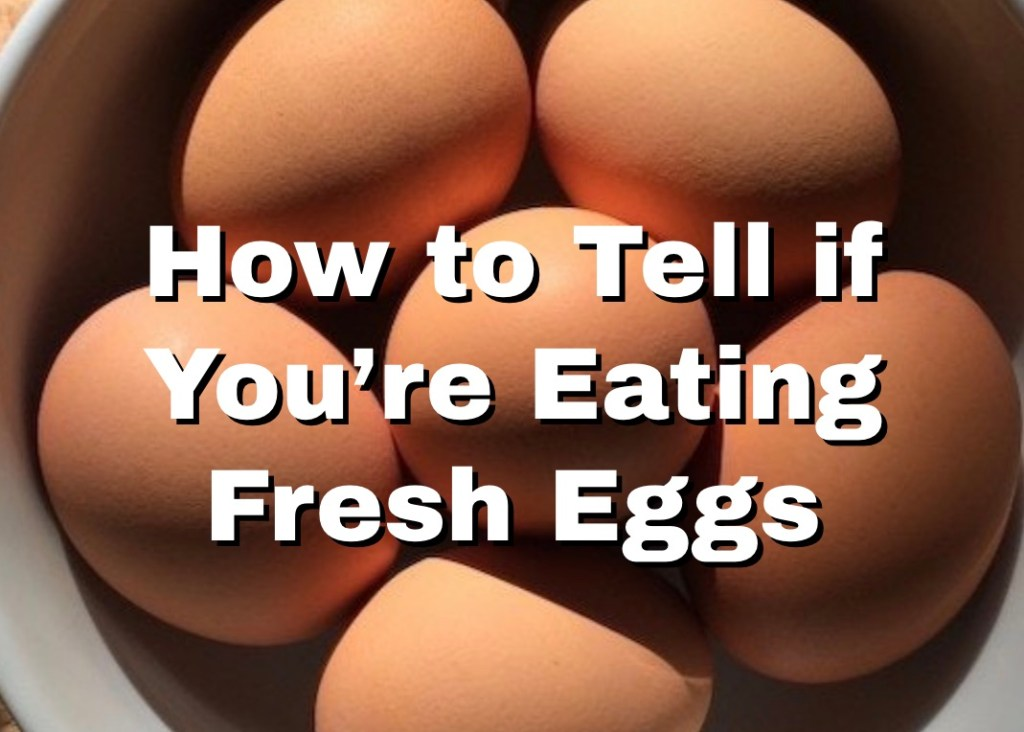 How to Tell if You're Eating Fresh Eggs 1