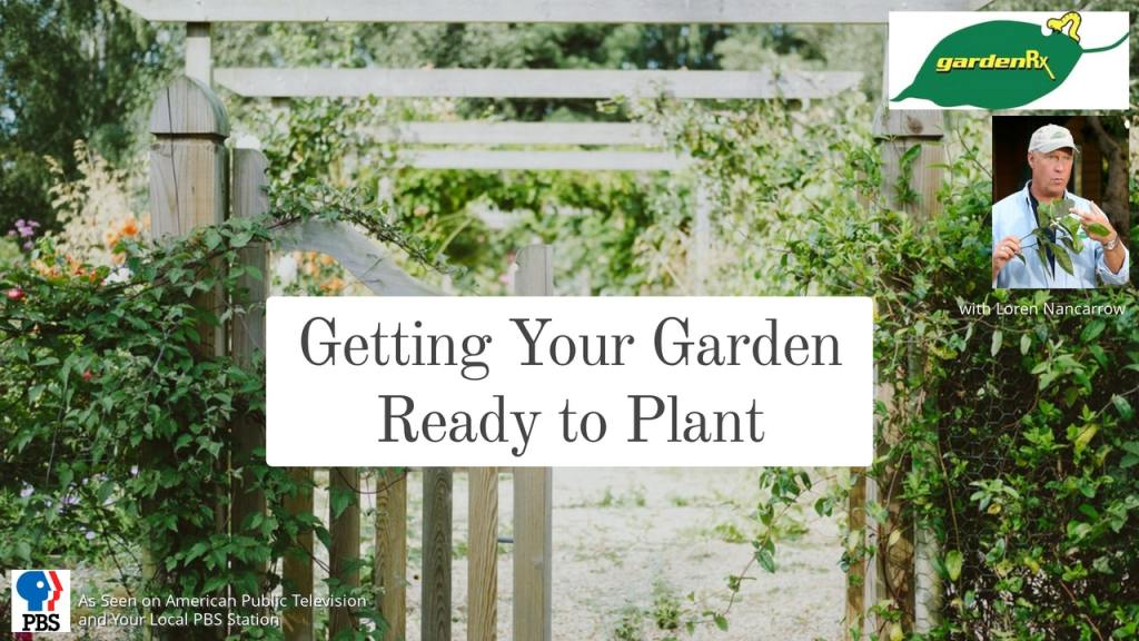 splash, getting your garden ready to plant