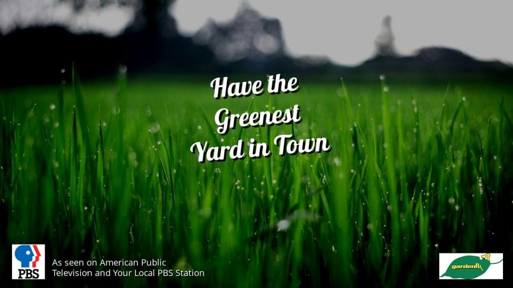 green lawn slick