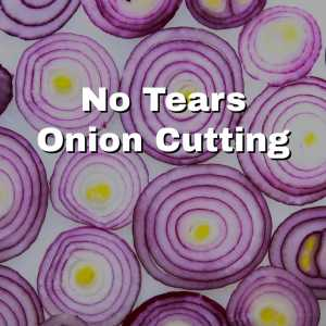 beautiful sliced red onions