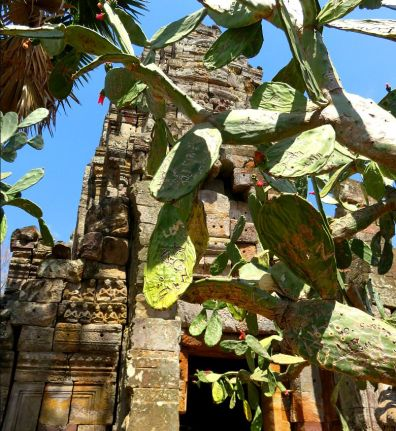 banan-temple-opuntia-figs