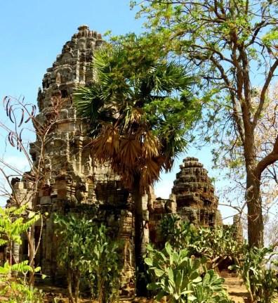 banan-temple-palmtrees