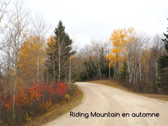 Riding Mountain automne