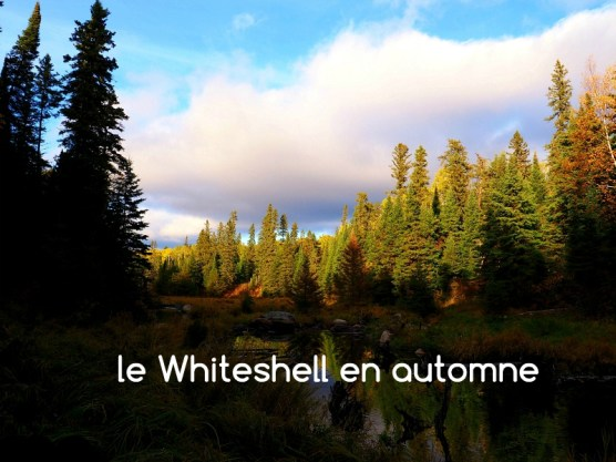 Whiteshell automne