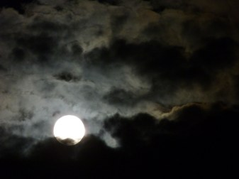 Luna santa faz9