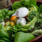 roppongi la jolla cobb salad picture