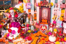 The Dia De Los Muertos Display from Isabel's Cantina & Wild Thyme Company