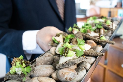 Mackerel - Eggplant - Caviar - Celery Root - Truffle