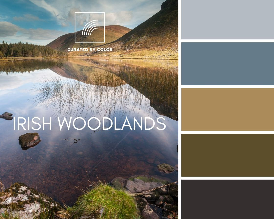 Irish Woodlands Color Palette for interior design project landscape of Glanteenassig Forest Park in Kerry Ireland with corresponding color palette.