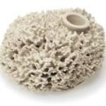 Macel Wanders Vase – Porcelain Sea Sponge  $218  FREE US SHIPPING