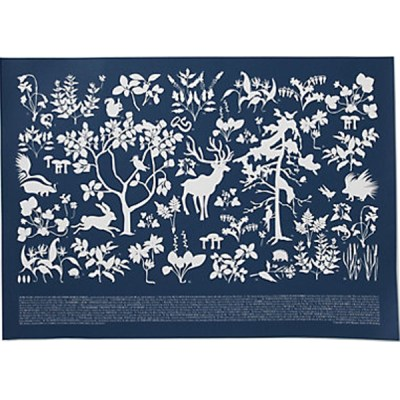 Boreal Forest Flora And Fauna Color Block Print