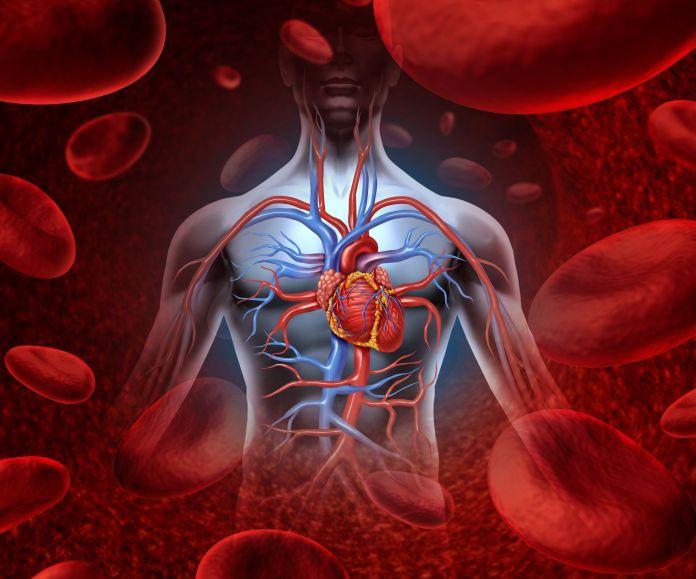 Effective steps to lower blood pressure – By Dr. Janardhana V Hebbar, Askveda Expert