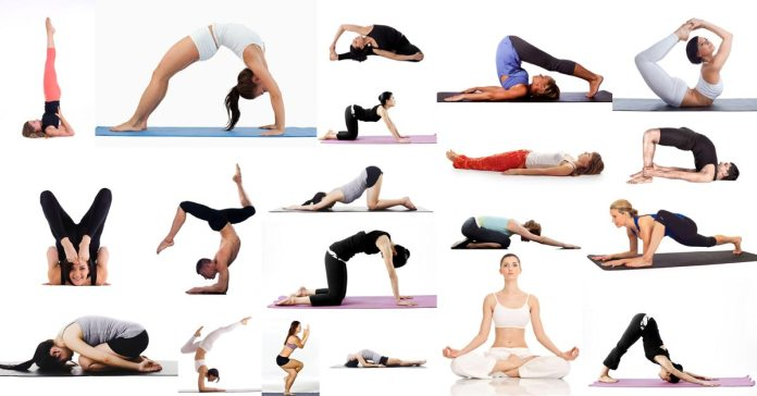 Amazing Health Benefits and Different Types of Yoga