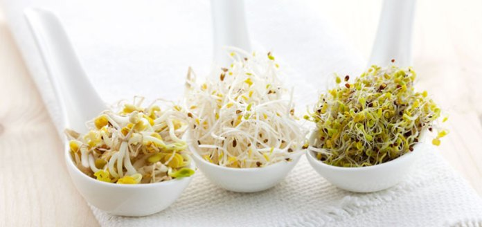 Sprouts: The Lively Food With 12 Amazing Health Benefits.