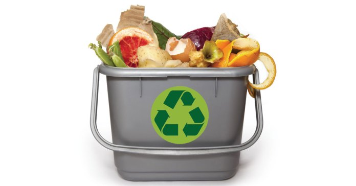 Stop Throwing Away Antioxidant-Rich Food Waste.