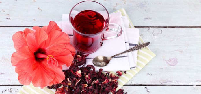 Best Ayurvedic Herbs For A Richer Meditation Experience.