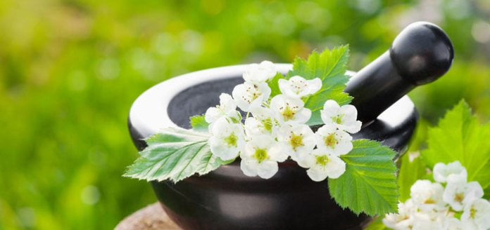 Why Ancient Ayurveda is Essential for Modern Living.