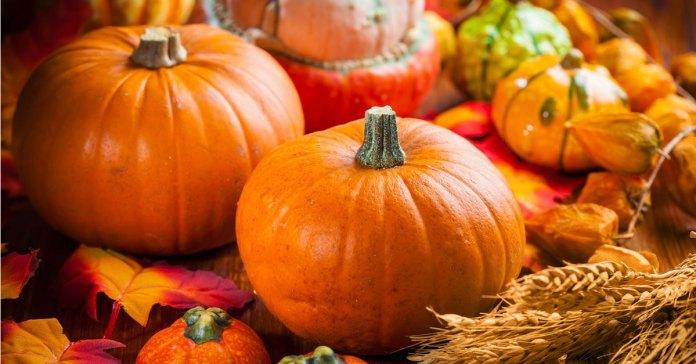 Ayurvedic Gluten Free Recipe: Pumpkin Quinoa Flatbread