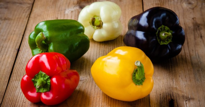 Here Is Why Bell Peppers Are The Best Vegetables
