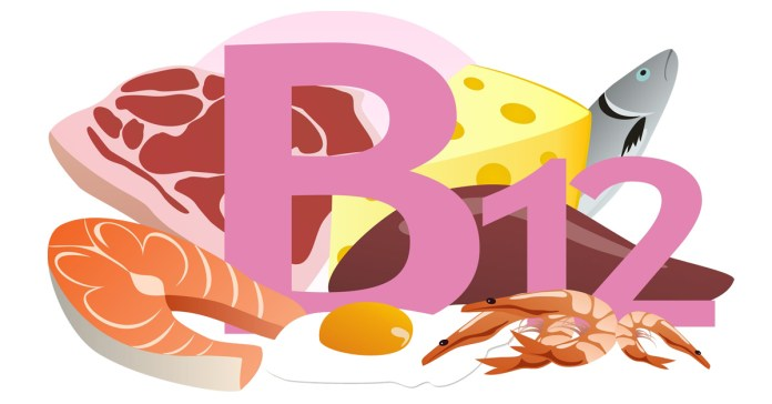 Vitamin B12 What Is It And What Does It Do