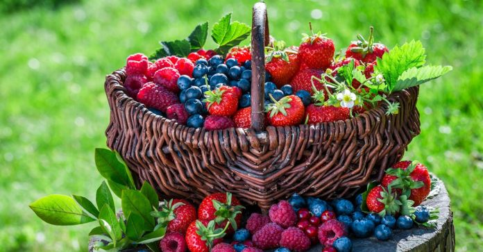 Fruitarian Diet - The Good The Bad And The Ugly