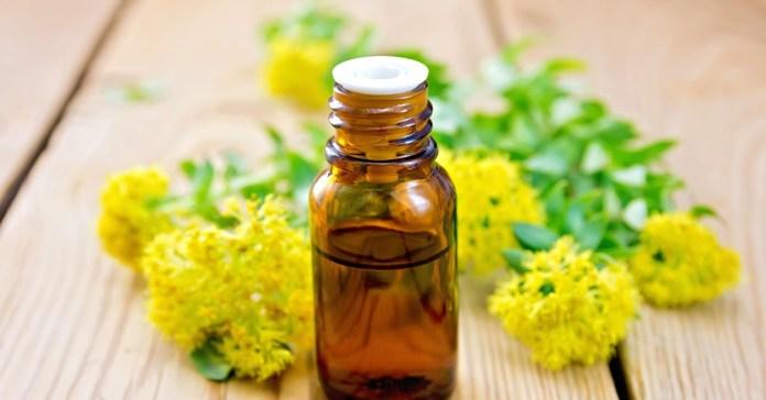 Rhodiola Rosea - Revolutionary Anti Aging Herb