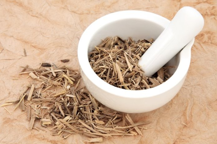 6 Magical Herbs For Boosting Energy And Fat Burn