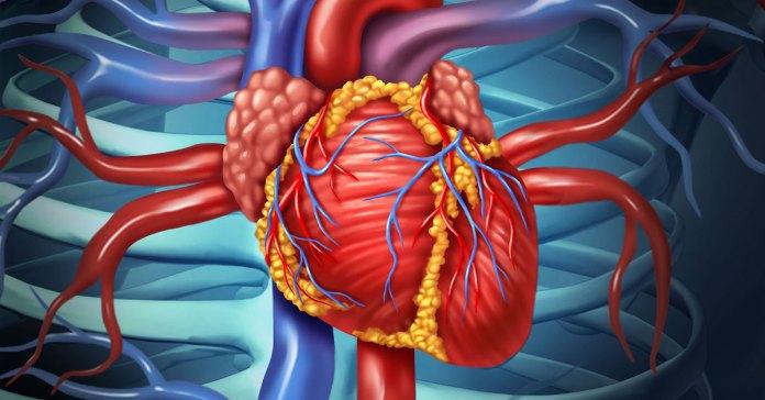 healthy-heart_FT