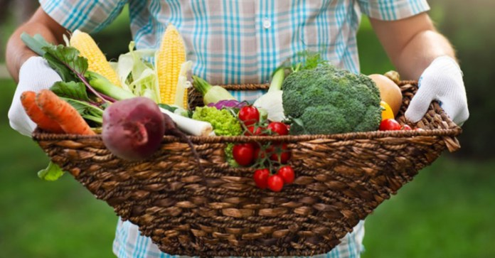 Pesticides-In-Foods-Wreck-Havoc-With-Sperm-Health
