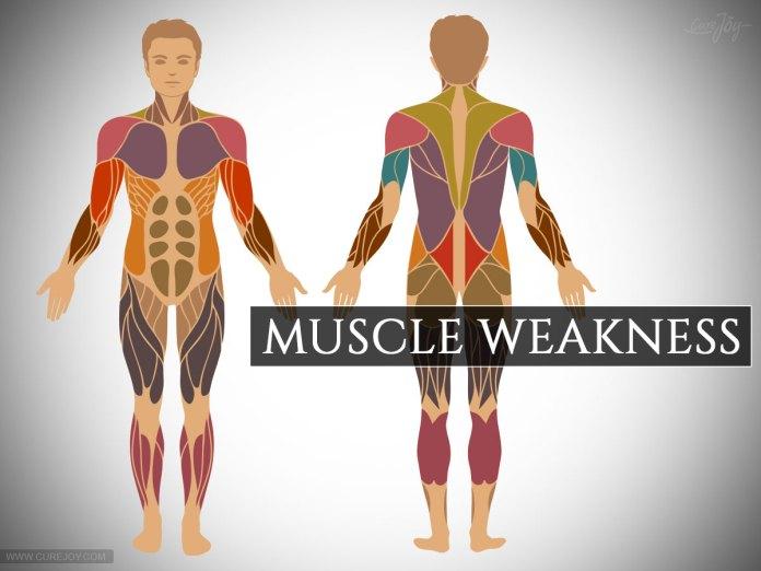 Muscle-Weakness