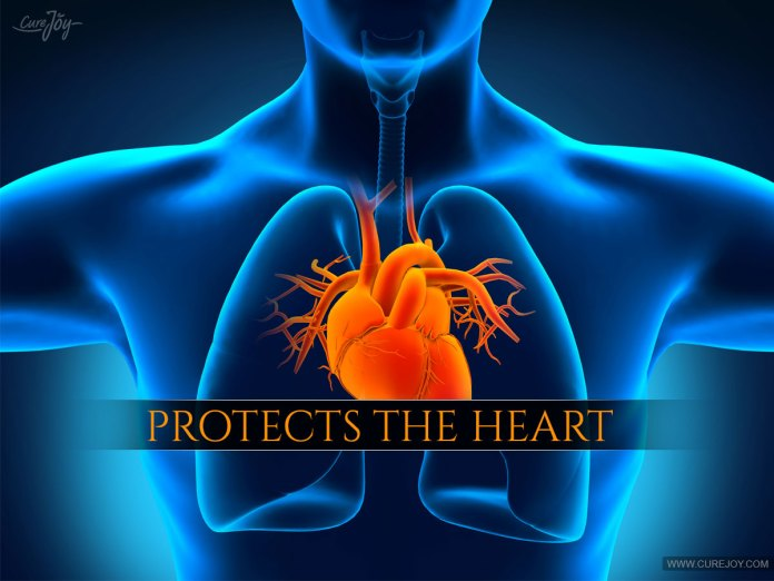 Protects-the-Heart