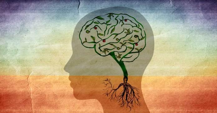 Ashwagandha for better mental health
