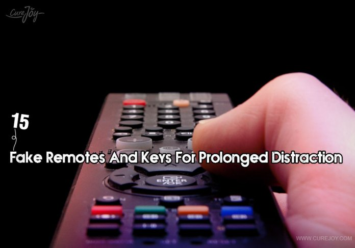 15-fake-remotes-and-keys-for-prolonged-distraction