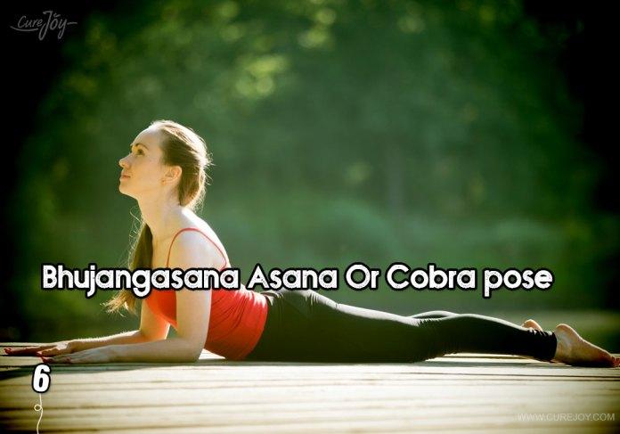 6-bhujangasana-asana-or-cobra-pose