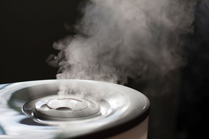 Humidifier: 9 Lifestyle Changes To Prevent And Treat A Sinus Infection