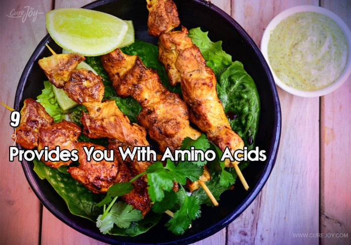 9-provides-you-with-amino-acids