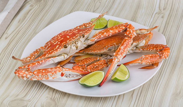 Seafoods are good sources of vitamin B12.